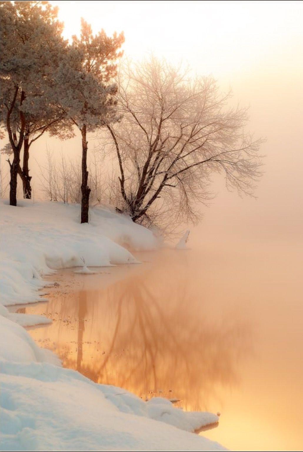 Misty Winter With Lake No Location Given By Bukenawa 500px Winter Scenery Winter Landscape Winter Scenes
