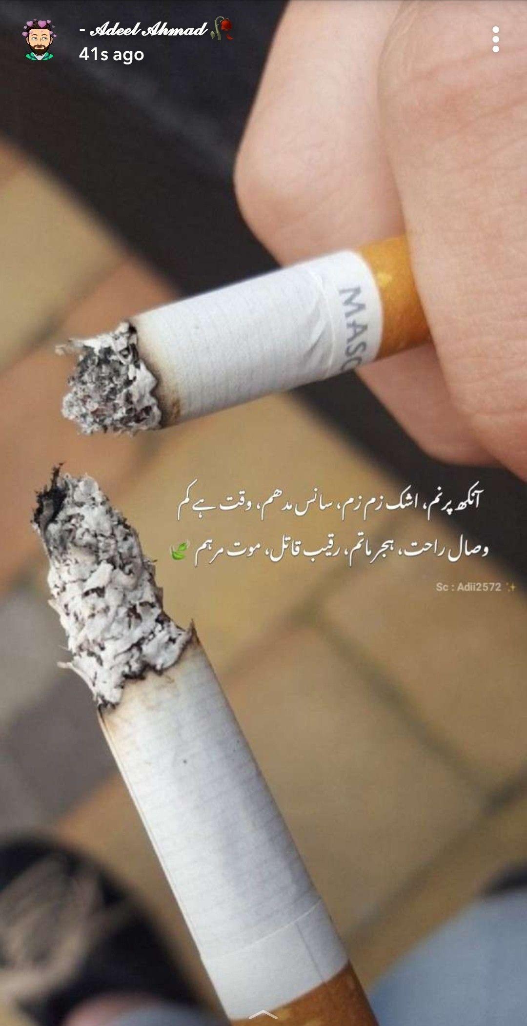 Pin On Urdu ادب