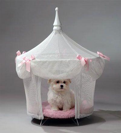 Maltese Princess Princess Dog Bed Dog Pet Beds Princess Dog
