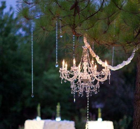 Backyard Event Lighting and Decor