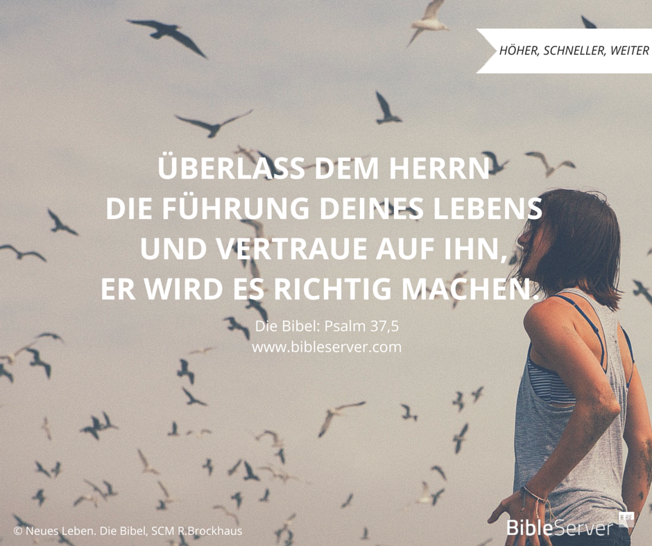 simple, uncomplicated, optimistic, Freies Erwachsentreffen enjoy the