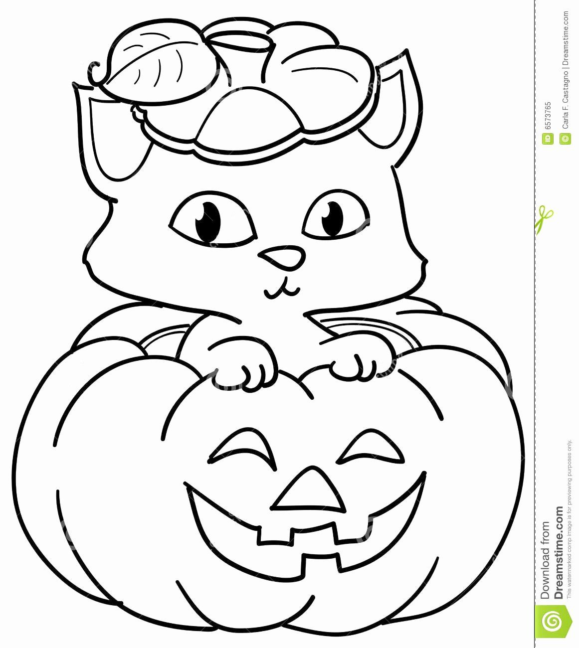 Bat Halloween Coloring Pages Elegant 61 Most Awesome Halloween Cat Coloring Page 7 4171 Cute