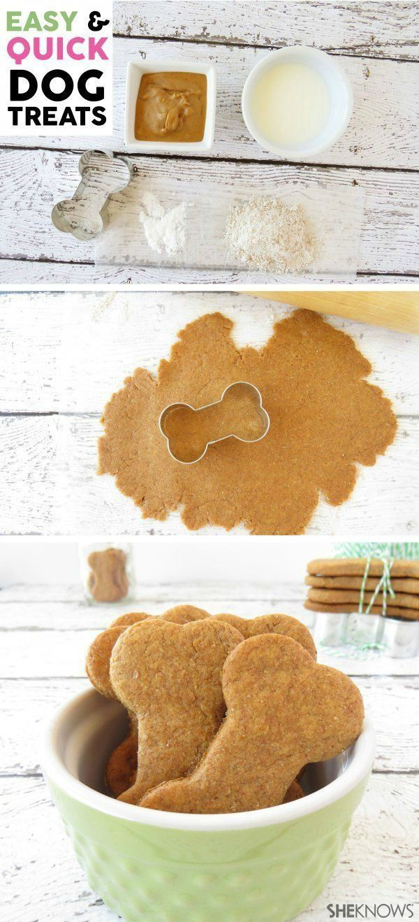 Easy & Quick DIY Dog Treats. A recipe idea that dogs love! Step-by-step tutorial included.
