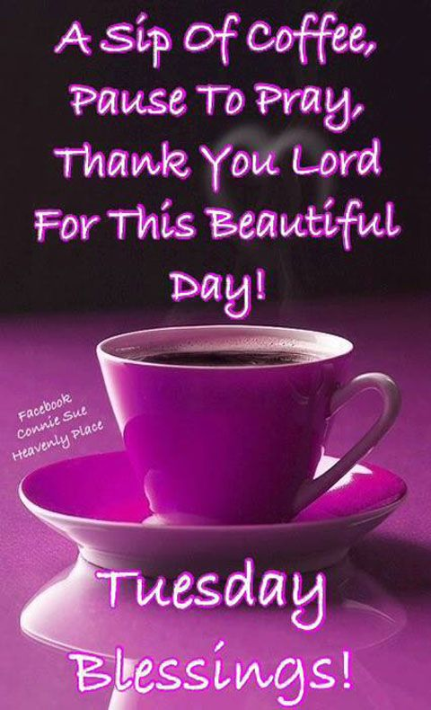 Thank You Lord For This Beautiful Day Good Morning Tuesday Morning Quotes Tuesday Quotes