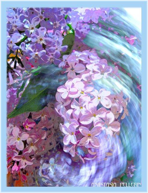 lilacswirlbeauty