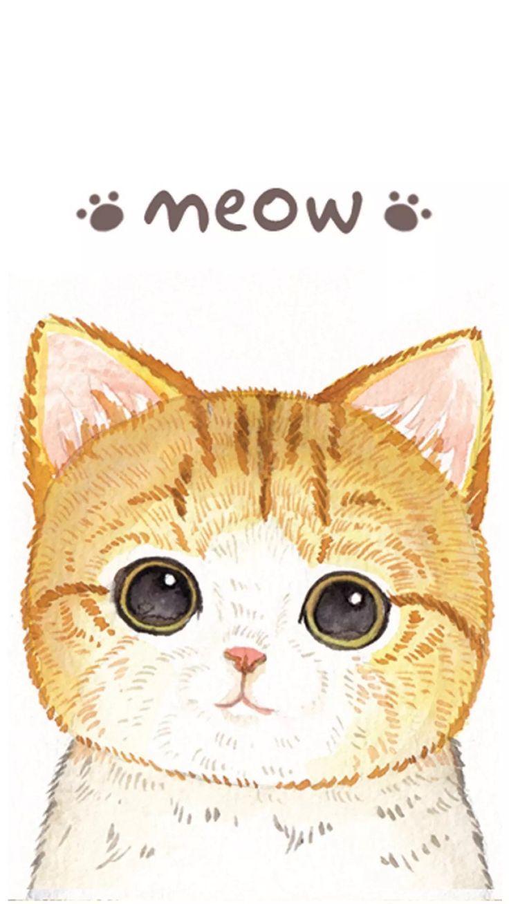 Cat Phone Wallpaper Cat Wallpapers Fonds D Ecran Chat In
