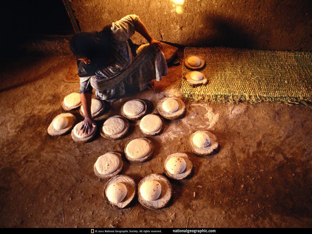 National Geographic kuvat - vapaa taustakuvia: http://wallpapic-fi.com/national-geographic-kuvat/uncategorized/wallpaper-38172