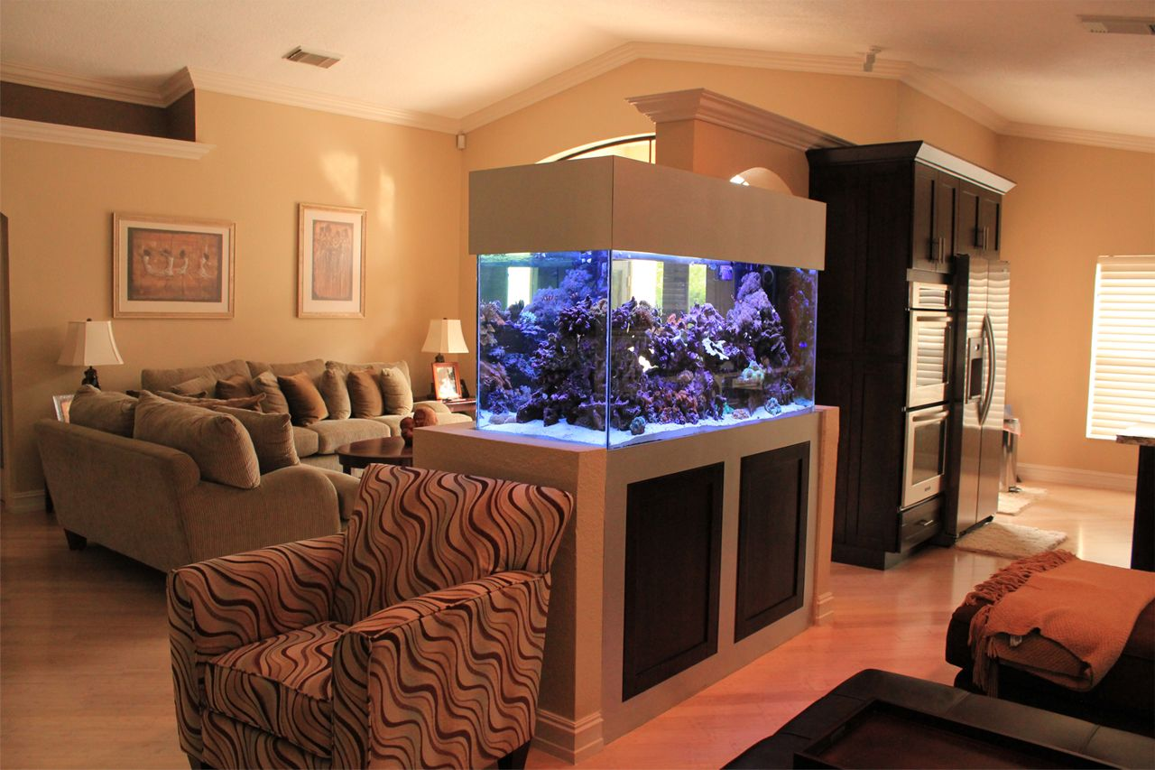 In Wall Double View « Aquarium Art access to service the