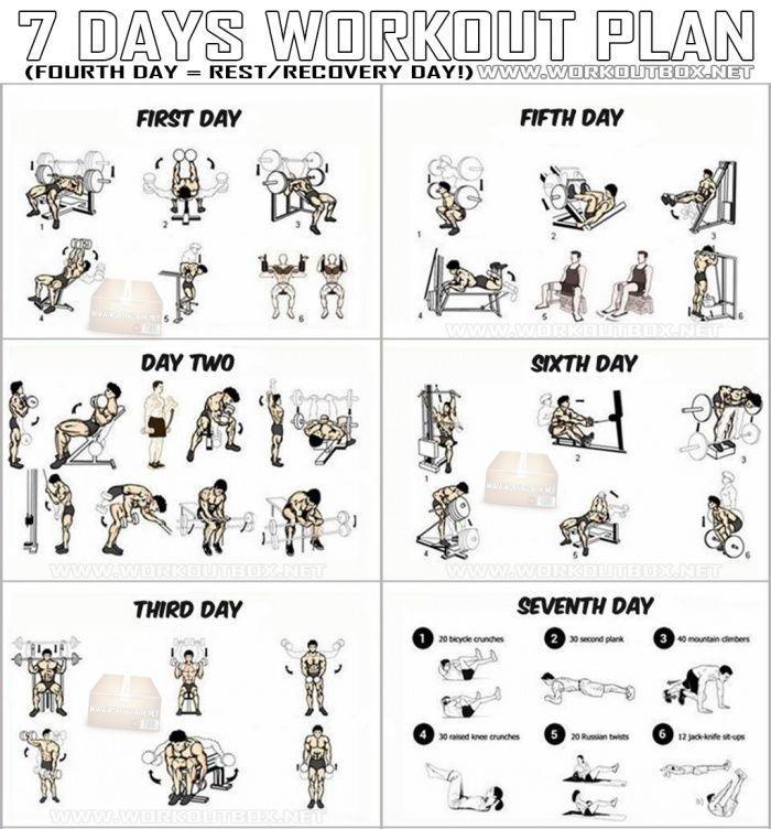 7 Days Workout Plan - Full Body Fitness Training Leg Arm Back Ab ... -  7 Days Workout Plan – Full B...