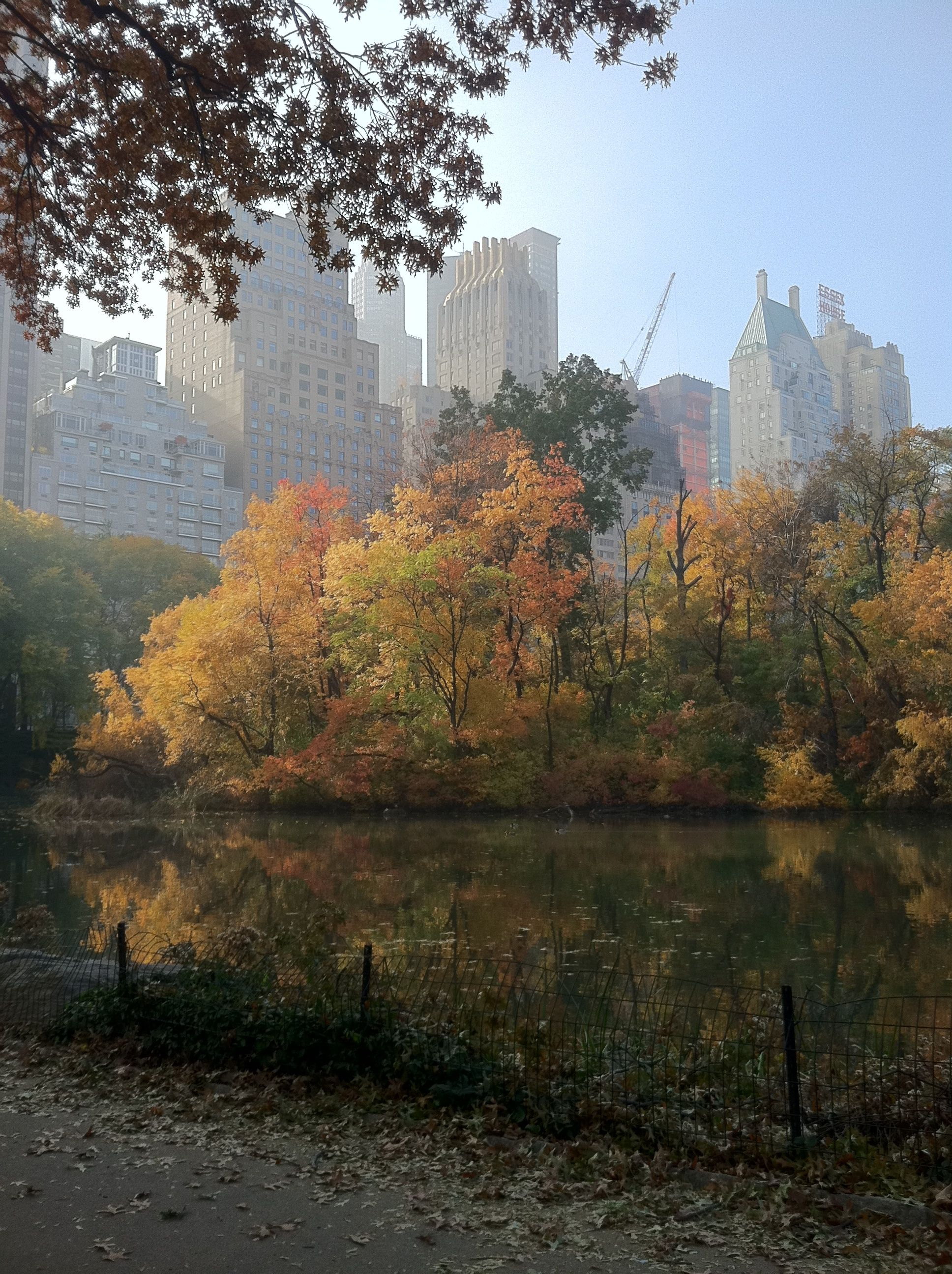 A view south from Central Park, New York City in November 2011.