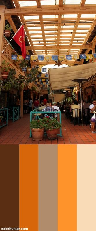 Cafe Coyote Mexican Restaurant Color Scheme Mexican Colors