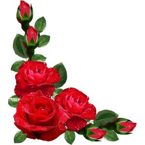 Rose Corner Border Buscar Con Google Flower Art Flower Phone Wallpaper Digital Flowers