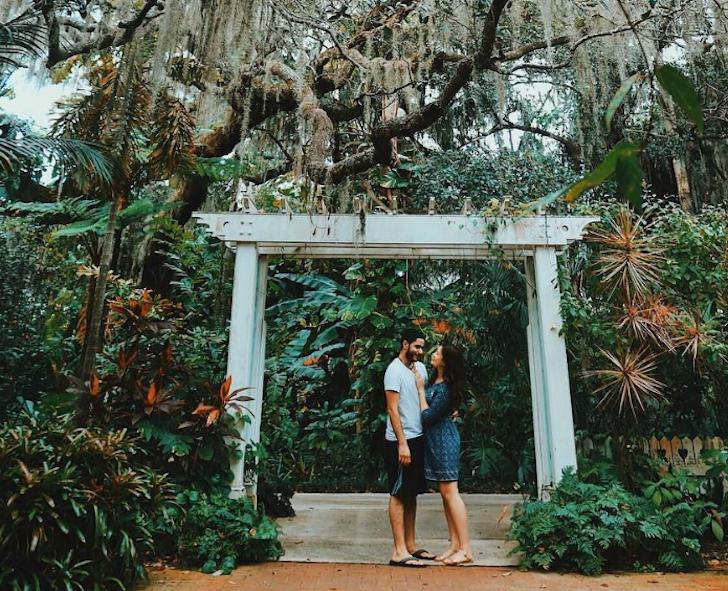 Orlando Botanical Garden in 2020 Botanical gardens