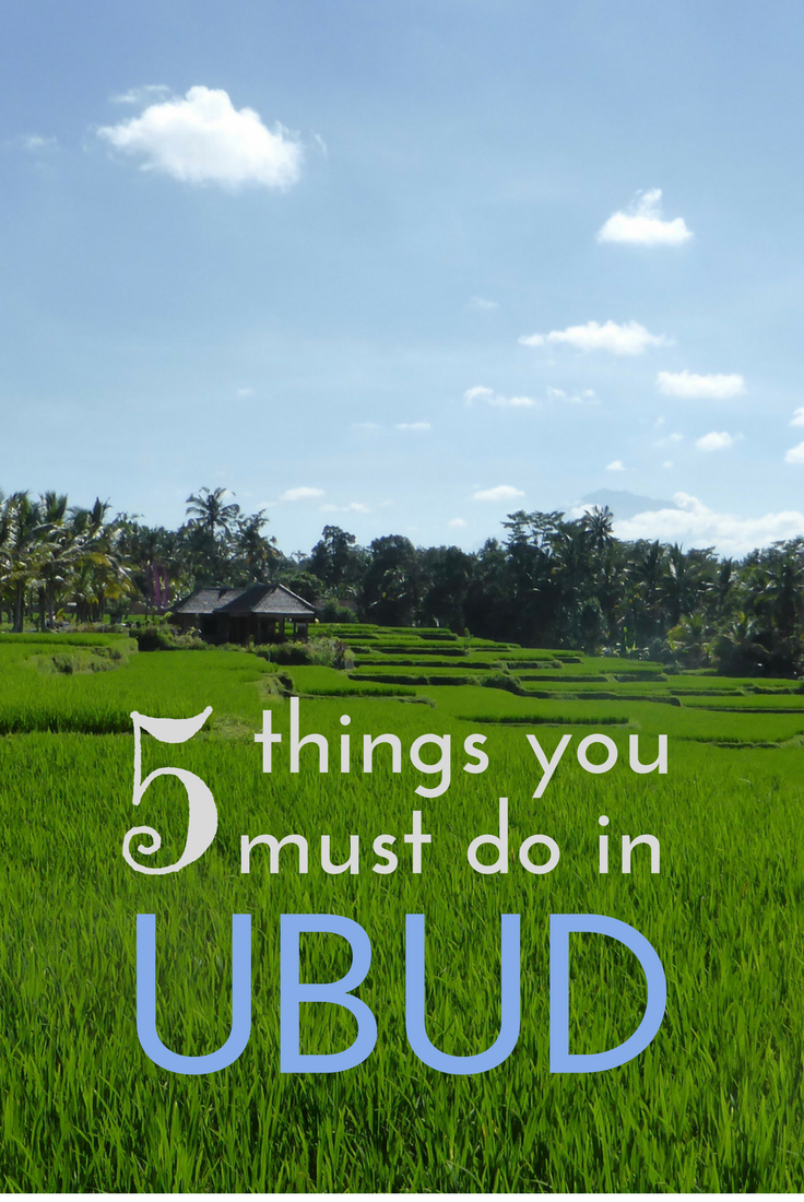Heading to Ubud? There's five things we highly recommend (and two things that we're very glad we avoided..)