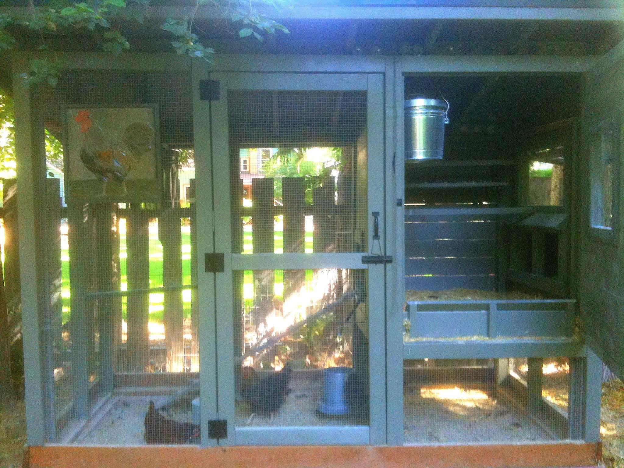 raising backyard chickens diy chicken coop coops and backyard