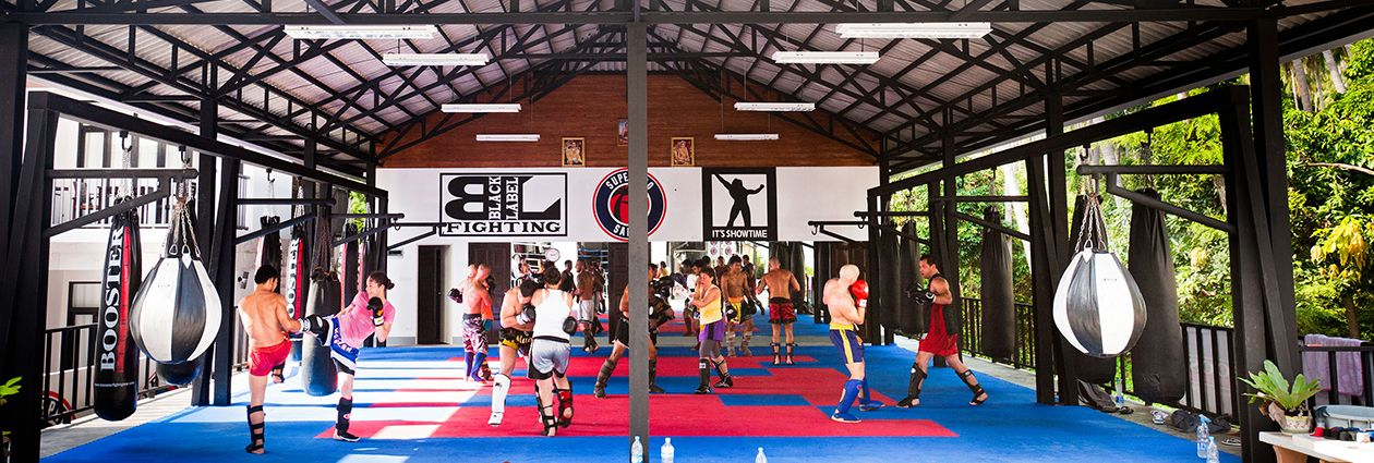 Approach Our Team Of Professional Trainers For Muay Thai Training Samui Make An Online Booking Through Email Martial Arts Gym Muay Thai Training Martial Arts