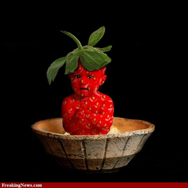 Baby Strawberry in a Dish....cute Photoshopped photo