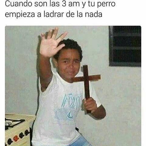 Memesespanol Chistes Humor Memes Risas Videos Argentina Memesespana Colombia Rock Memes Love Viral Bogota Mex Funny Memes Aussie Memes New Memes