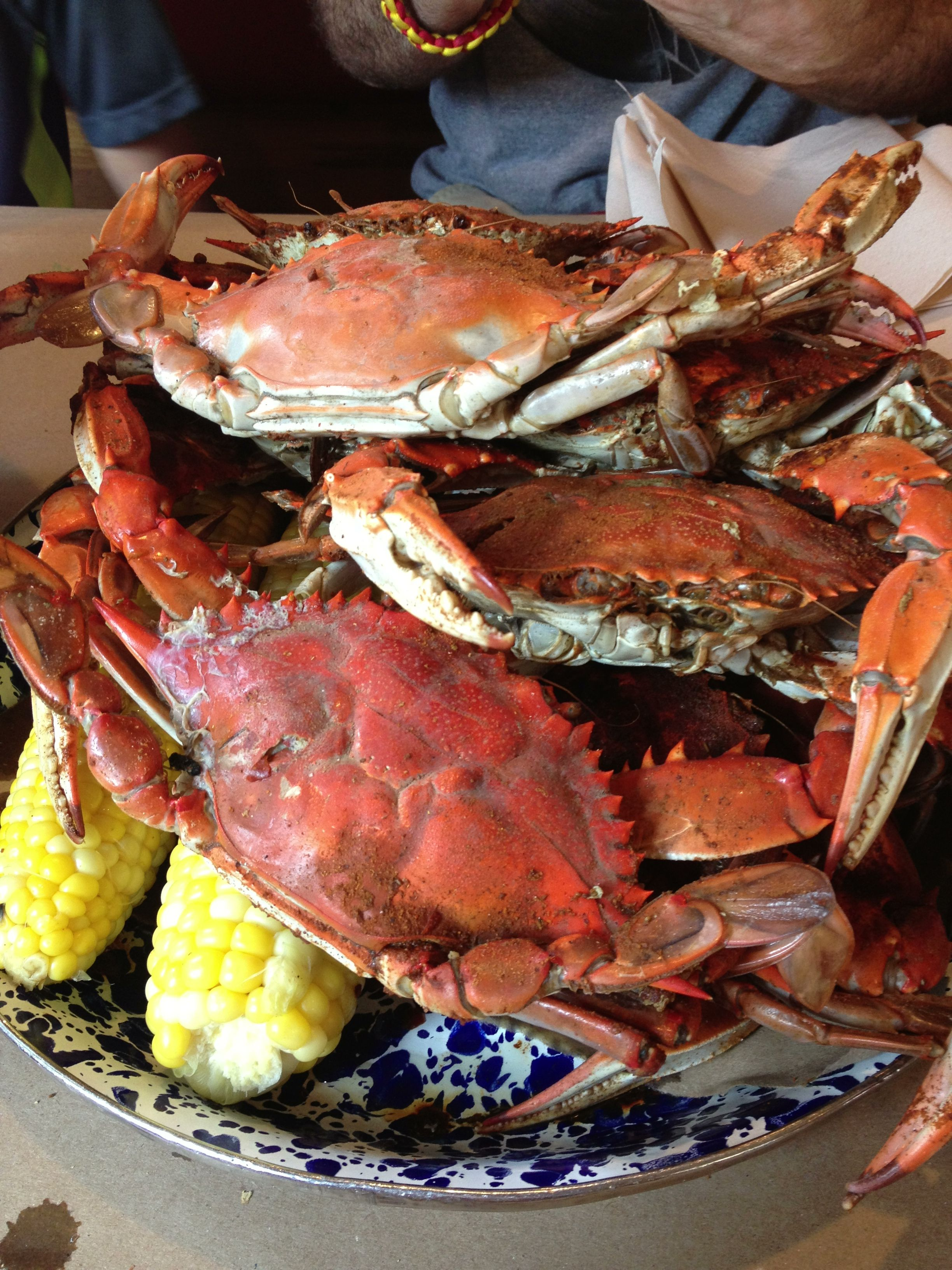 how to eat crabs maryland