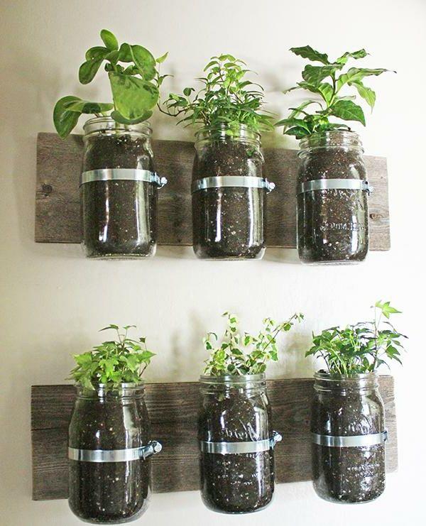 durchschimmernde kübel für eine besondere und lebende on indoor herb garden diy wall mason jars id=74977