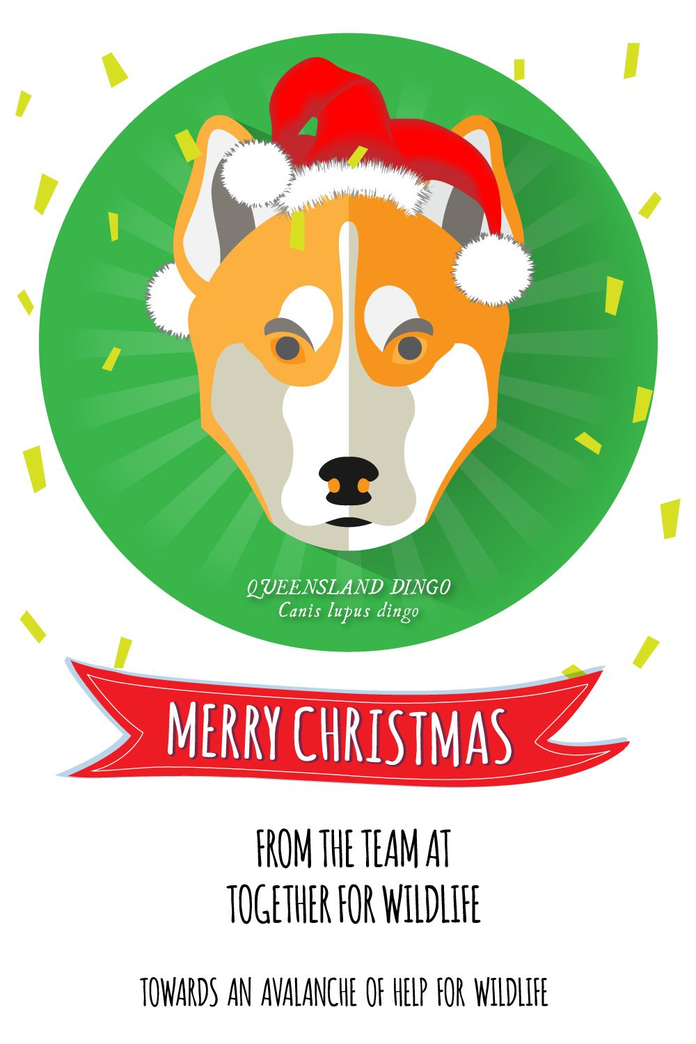 Merry Christmas From The Team At Together For Wildlife Wildlife Wildliferescue Merrychristmas Dingo Queenslanddingo Queen Merry Merry Christmas Wildlife