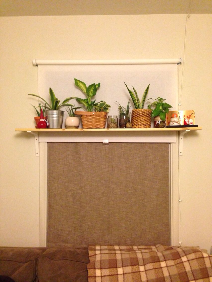夜屋内から Ikeaのロールカーテン Diy目隠しカーテン Diy棚 観葉植物