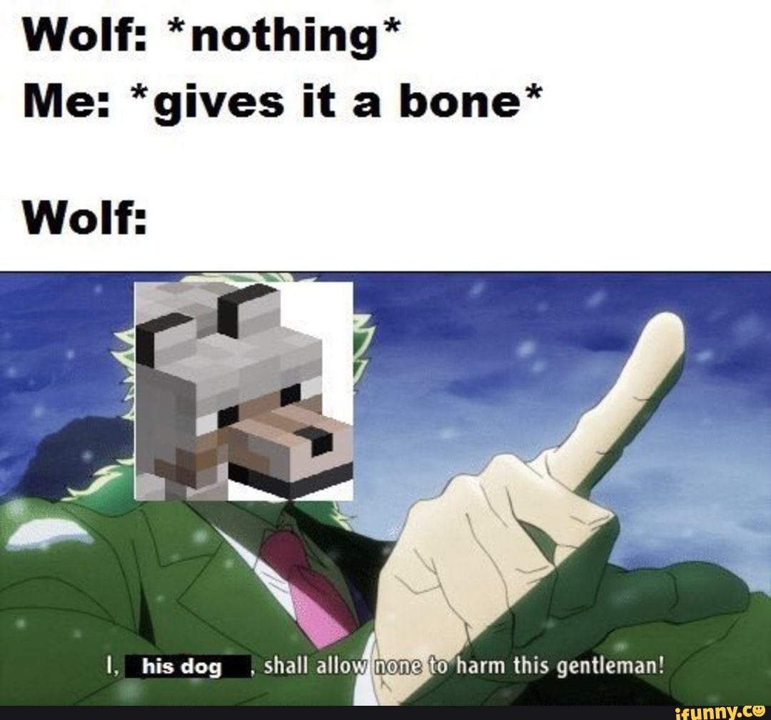 Wolf Nothing Me Gives It A Bone Wolf Ifunny Funny
