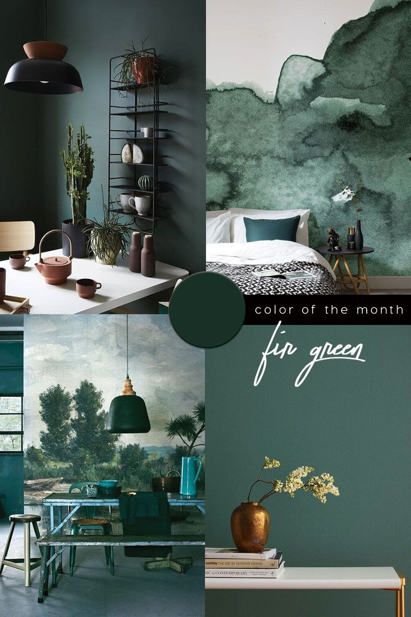 Dark Green Color Trend In 2020 Green Interior Design Green Painted Walls Green Interiors