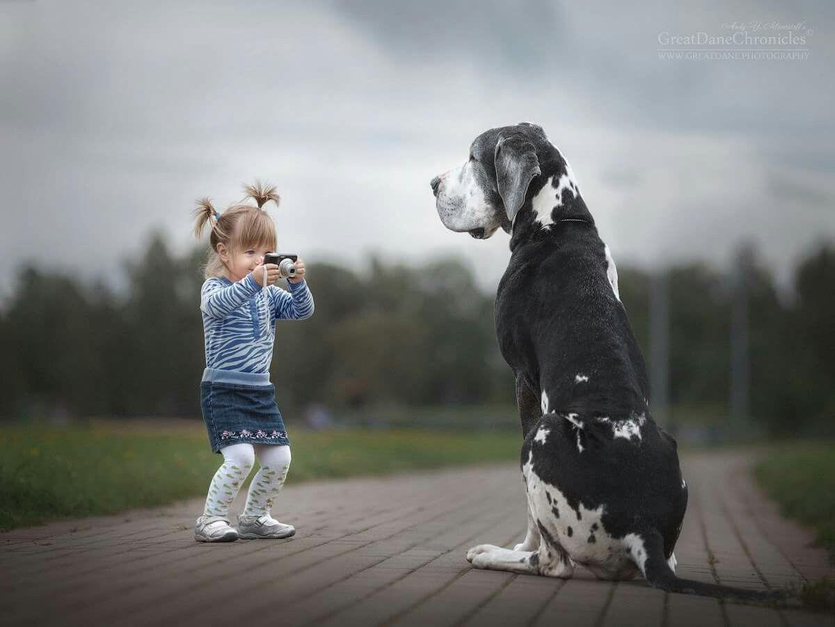 Pin by deedra buchanan on dog days Pinterest
