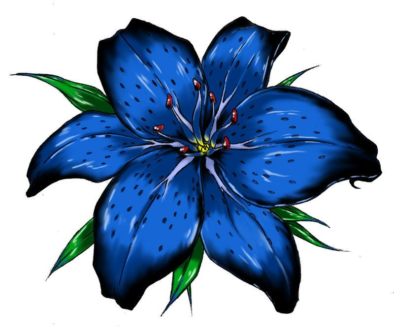 Blue Tiger Lily Tattoo | Tiger Lily by Raikoh101 | Tiger ...