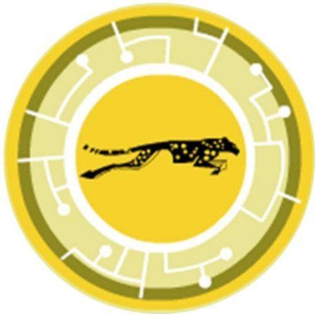 Wild Kratts Cheetah Google Search Aventura Com Os Kratts Aniversario De Irma Guepardo