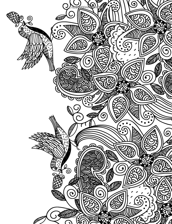 Amazon Really RELAXING Colouring Book 5 Flights Of Fancy A Winged