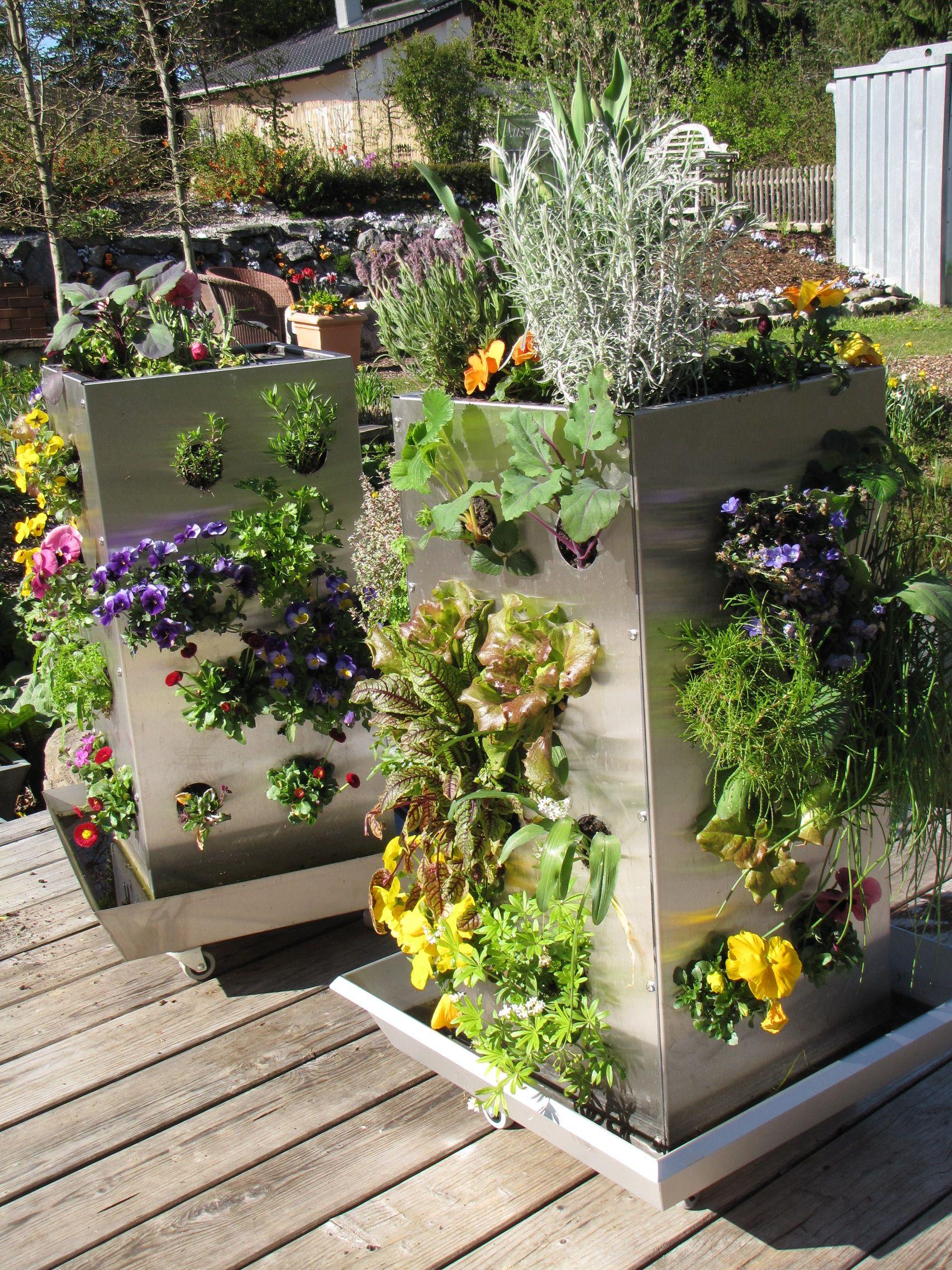 Krauter In Der Kuche Anbauen Kubi Ein Ganzer Garten Auf 1m Das