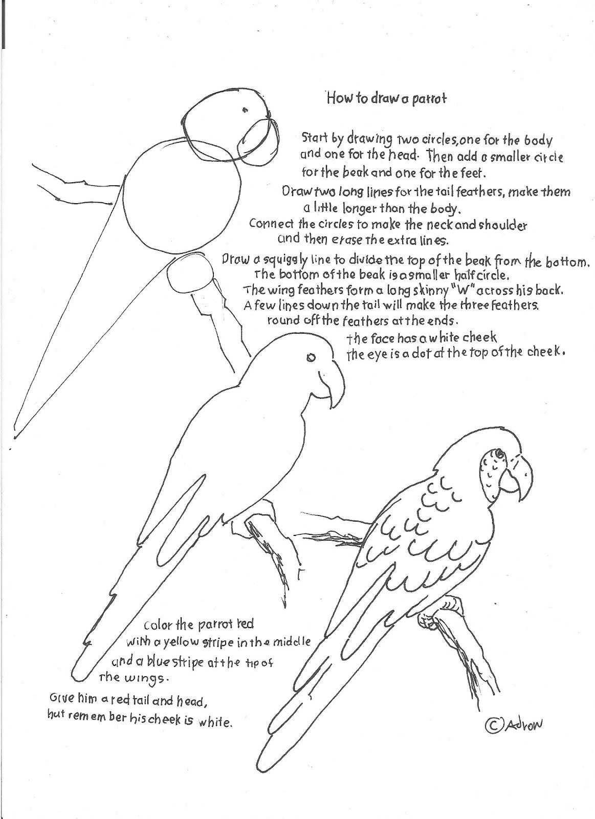 How to Draw Worksheets for Young Artist: How to Draw a Parrot Worksheet for Youn…