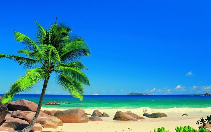 Garden Design With Nature Landscapes Beach Sea Wallpapers Diy Landscaping From