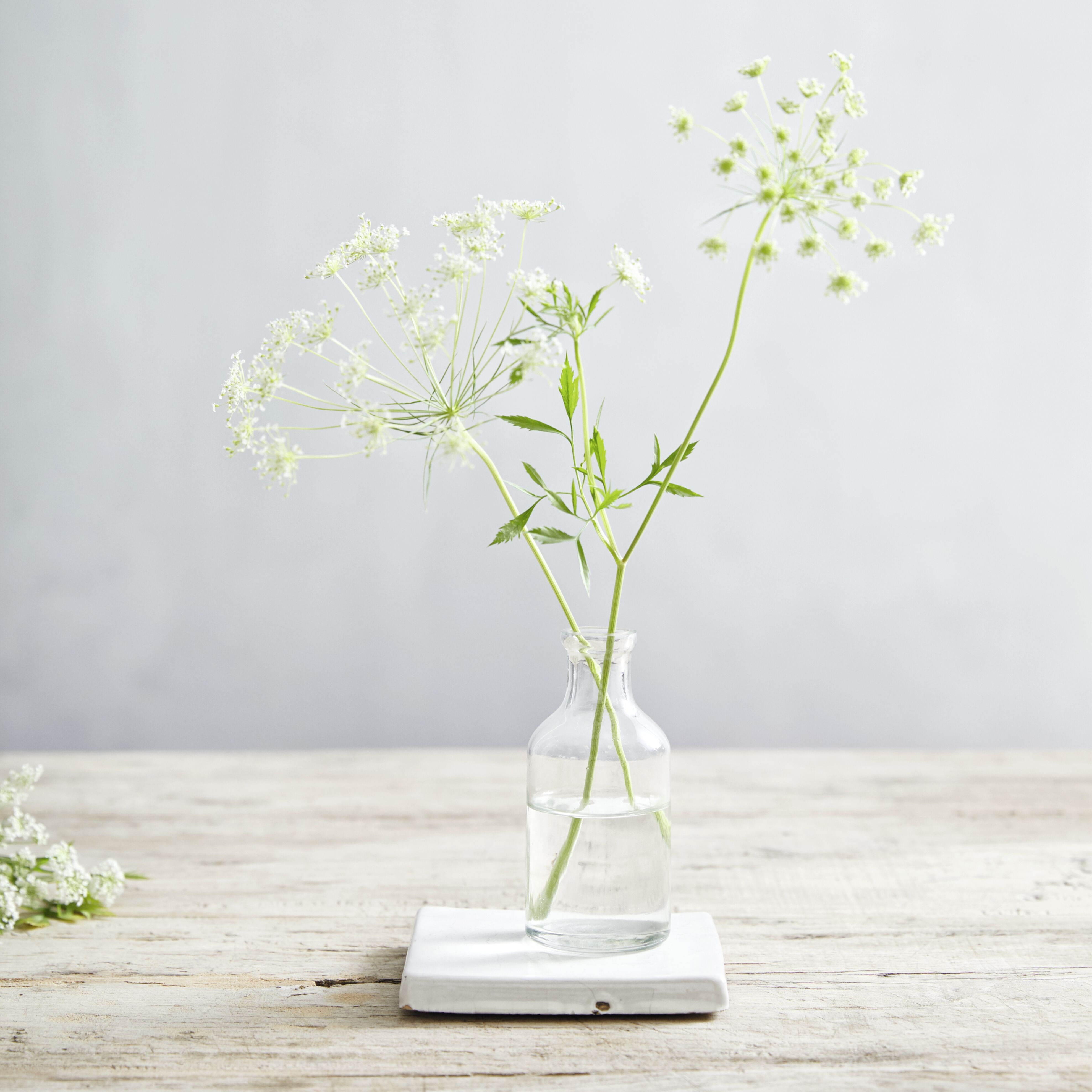 Mini bud vase in dining room inspiration pinterest