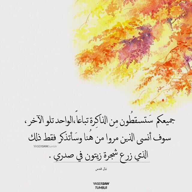 جميعكم Arabic Quotes Quotes Messages