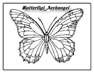 butterfly color sheet butterfly coloring page printable kids coloring pageskids - Butterflies To Color 2