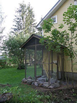 Varjoyrtin Puutarha Kissan Ulkoiluaitaus Cat Enclosure Cat Patio Cat Garden