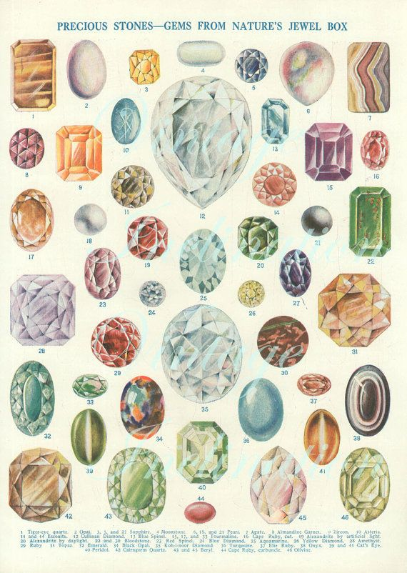 Vintage Print 1920 Antique Precious Stones Gems From Etsy Jewelry Drawing Jewel Drawing Jewelry Rendering
