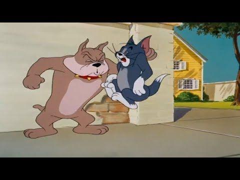 Tom Und Jerry Deutsch Neue Folgen