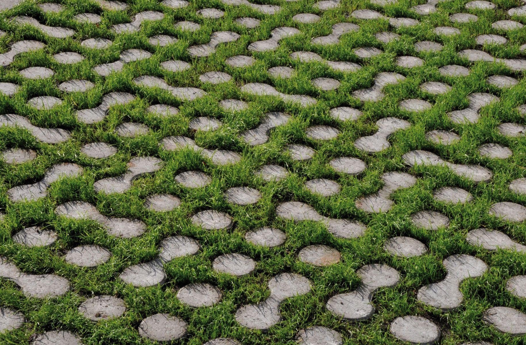 Epingle Sur Jardins Paysage