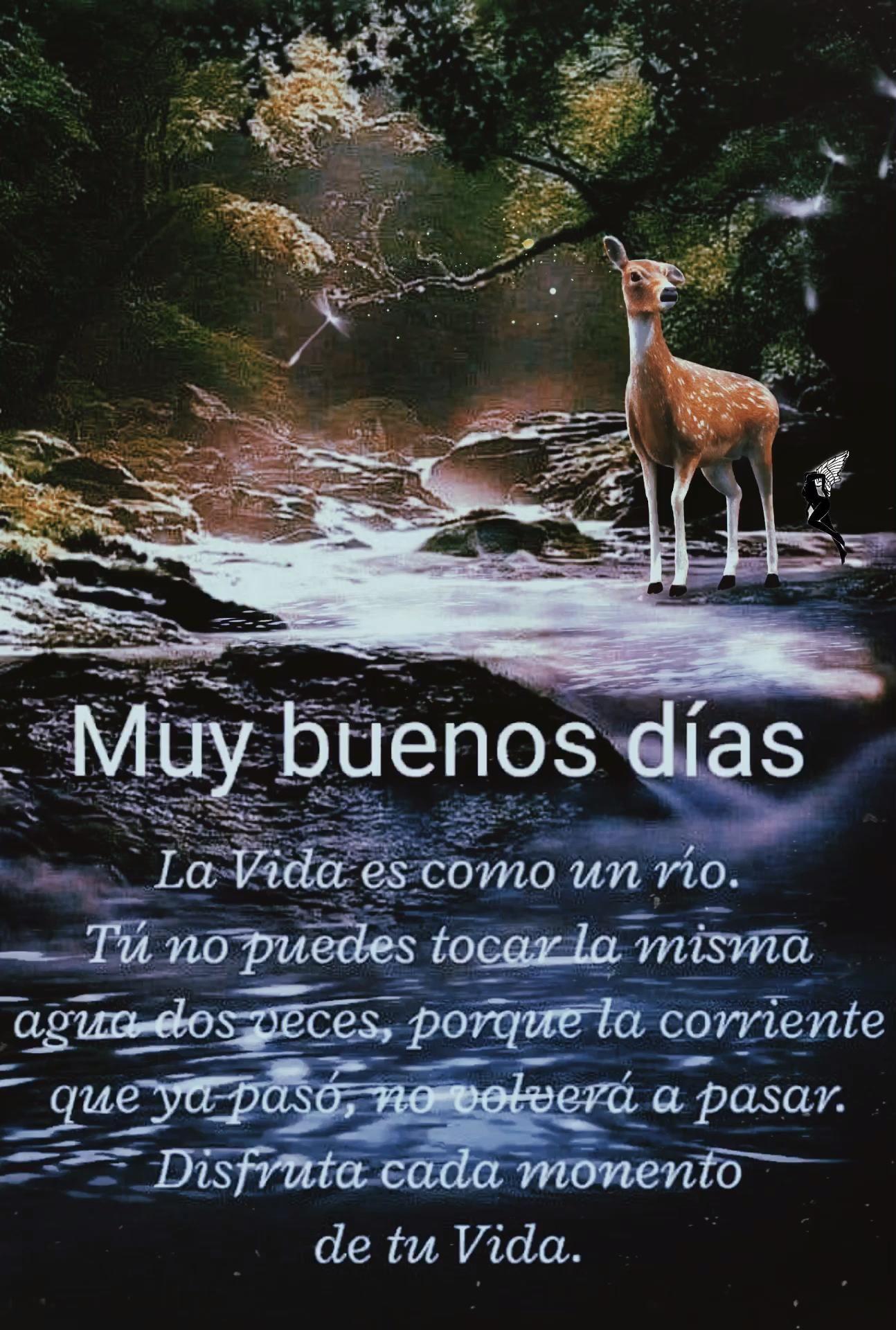 Photo of La vida…