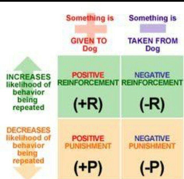 Reinforcement Chart Operant Conditioning Ap Psychology