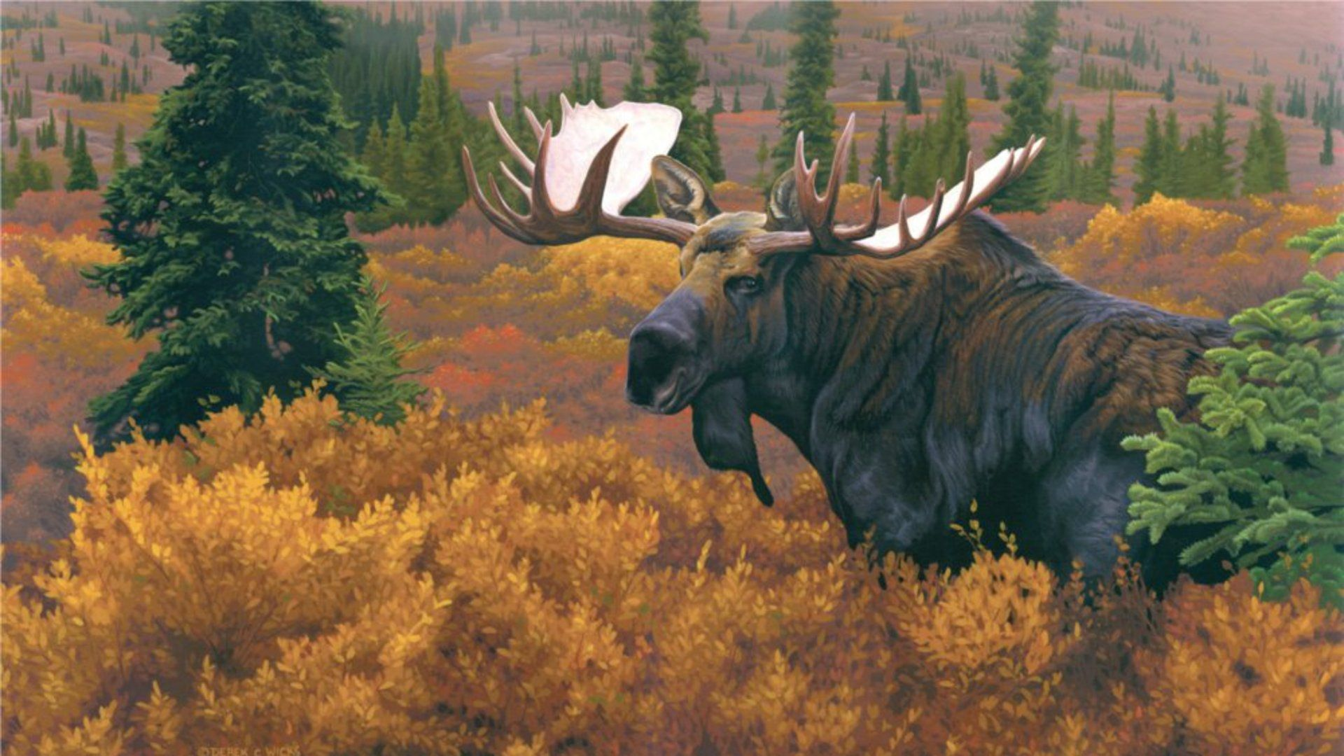 Undefined Alaska Wallpaper 56 Wallpapers Adorable Wallpapers Moose Pictures Moose Painting Wildlife