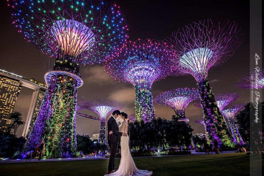 Pre Wedding At Garden By The Bay Singapore Actual Day Wedding And Rom Photography By Lam Wedding Photo Gardens By The Bay Singapore Photos Free Things To Do