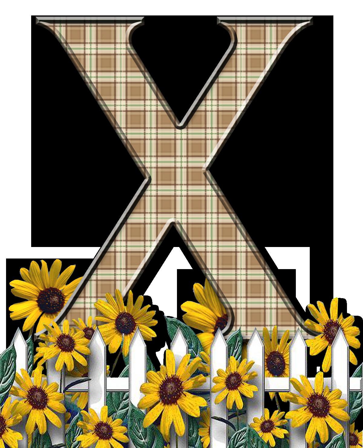 Letra Con Verja Floral X