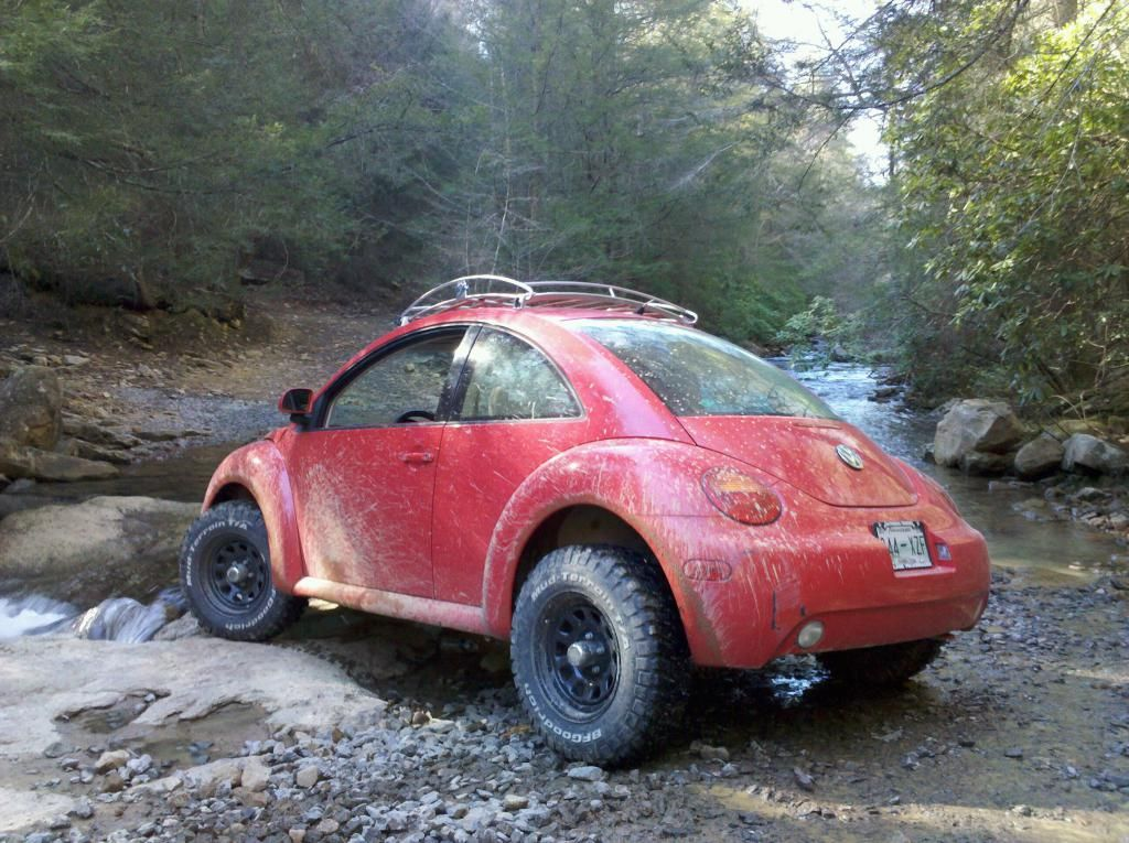 beetle baja newbeetleorg forums  beetle pinterest beetle