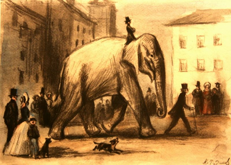 Слон из басни крылова картинки