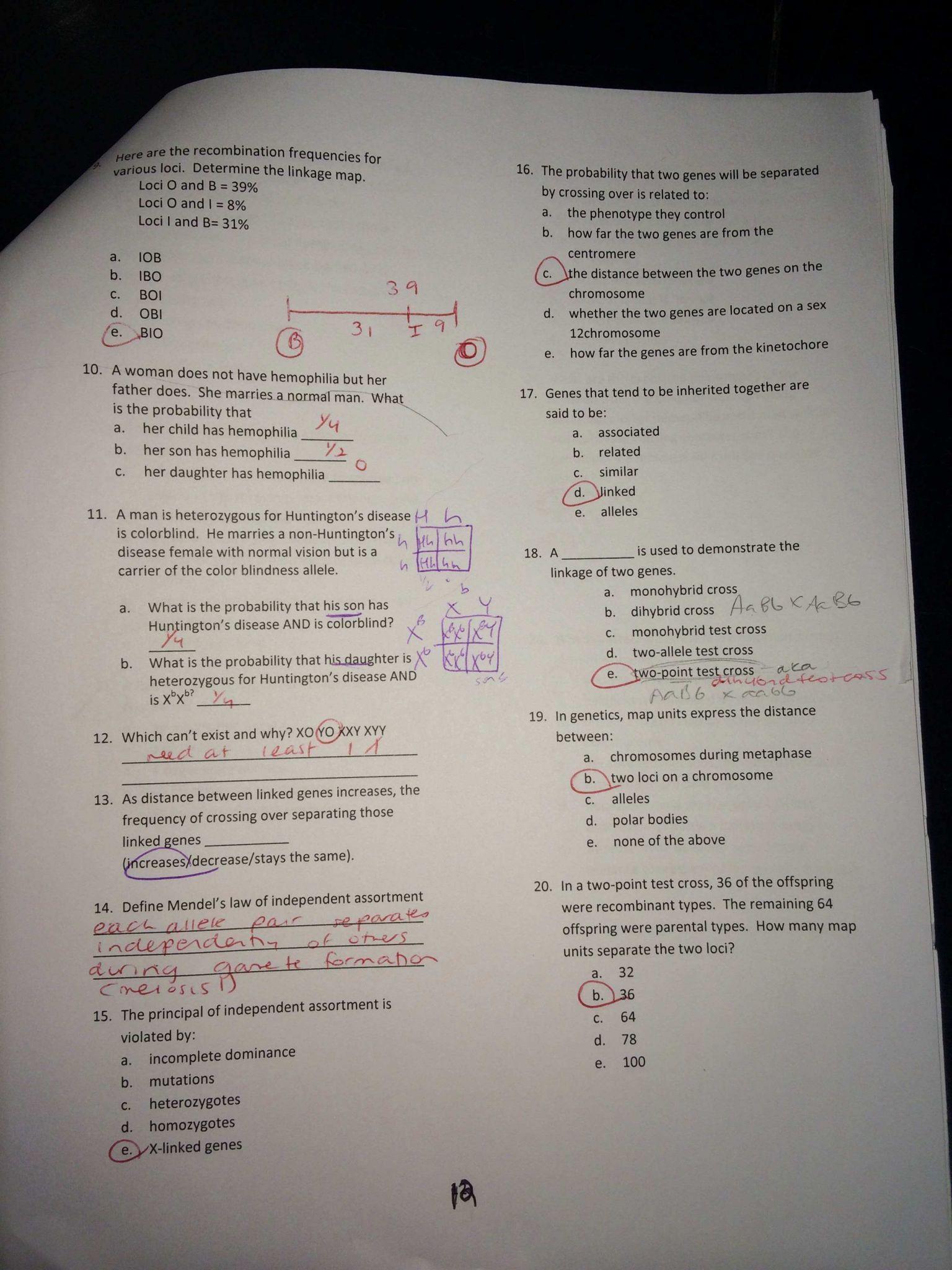 Inspiring Blood Types Worksheet
